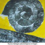 Cartel XIII Jornadas Aragonesas de Paleontología